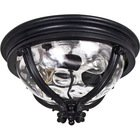 "Maxim Lighting -  16"" Camden VX 3-Light Outdoor Ceiling Mount in Black with Water Glass"